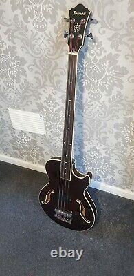 Ibanez Fretless Bass Guitar
