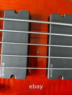 Spector 5 string Rebop bass